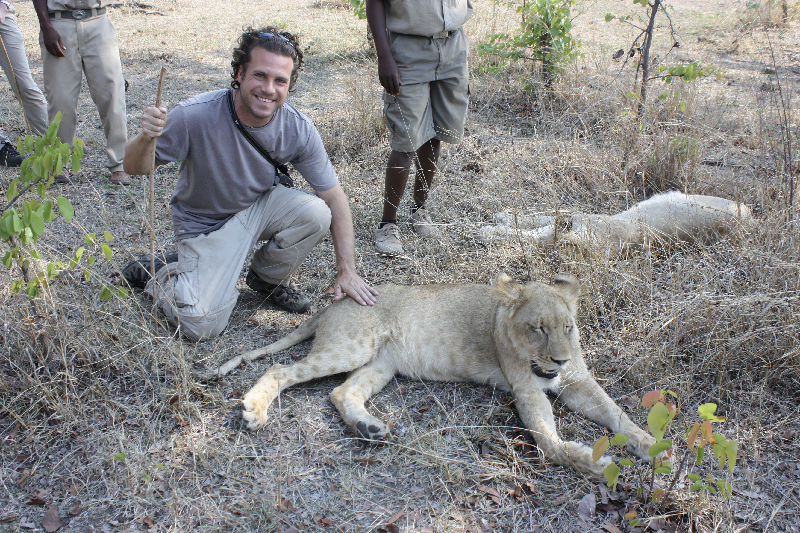Petting lions in Zambia