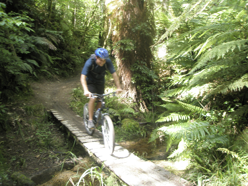 Mountain biking the Whakarewarewa Forest in Rotorua, New Zealand