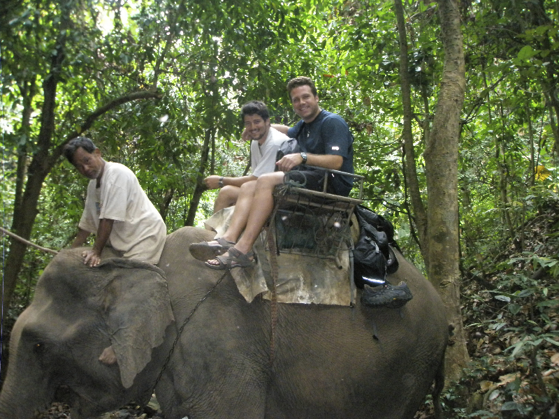 Elephant safari through the jungles of norhtern Thailand