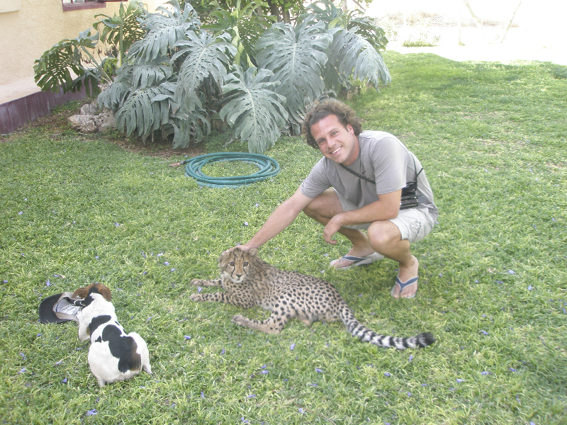 Petting a cheetah cub at the Cheetah Farm- Namibia