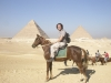Pyramids on horseback- Giza, Egypt