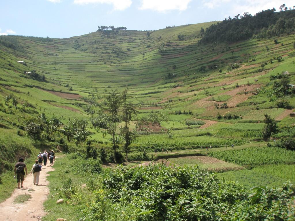 travel, backpack, backpacking, budget, adventure, explore, U, university, world, campus, field, notes, professor, Africa, Uganda, Lake, Bunyoni, cruise, resort, village, boat, trip, hike, trek, hill, mountain, lush, green, terrace,