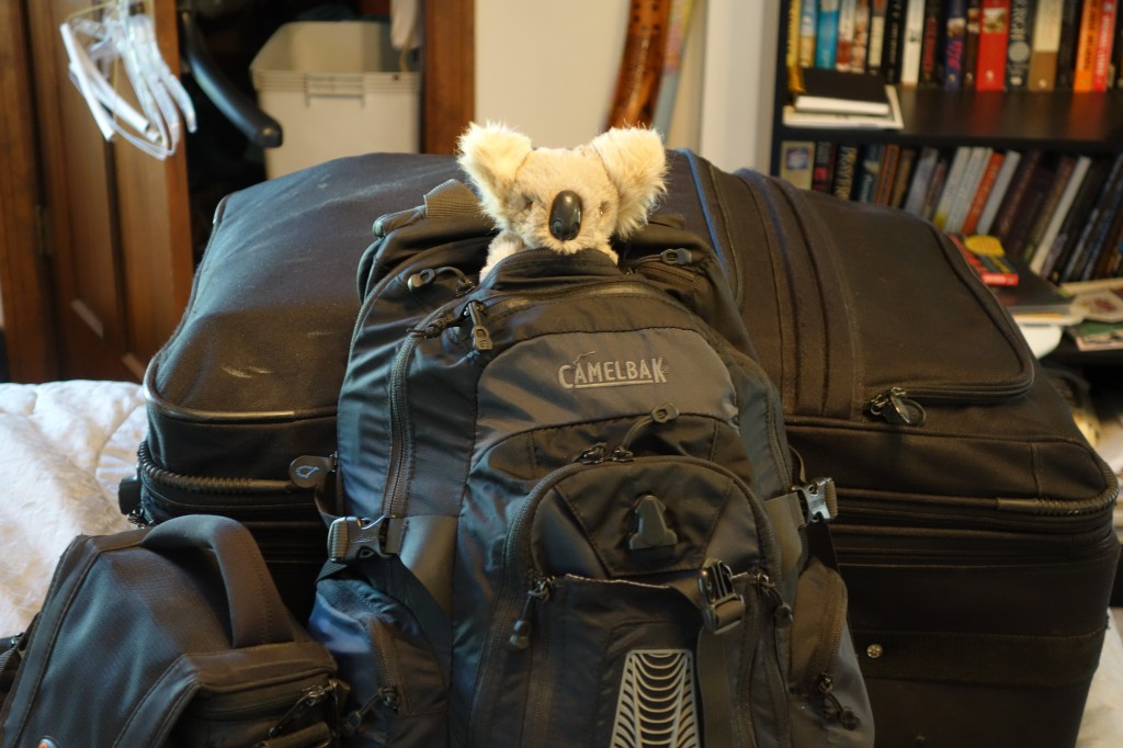 backpack, backpacking, budget, adventure, explore, U, university, world, campus, field, note, professor, koala, tourism, best, job